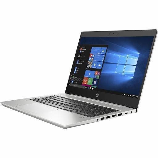 HP ProBook 445 G7 (7RX16AV_V2)